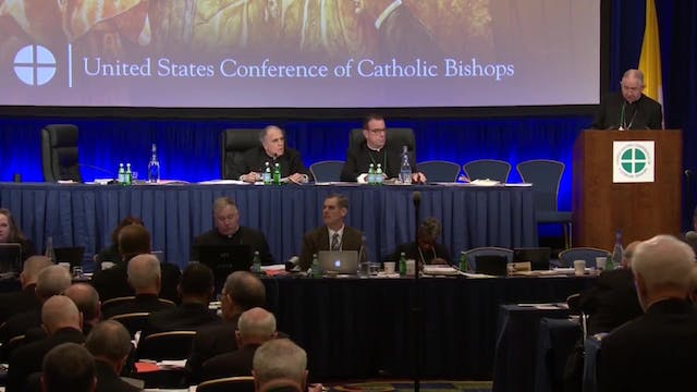 U.S. Bishops speak out against racism...