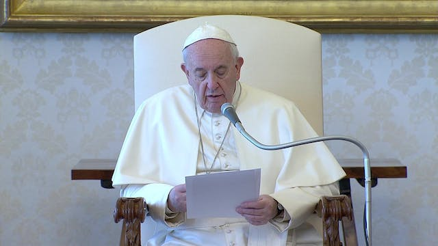 Pope at Audience: Most noble battle i...