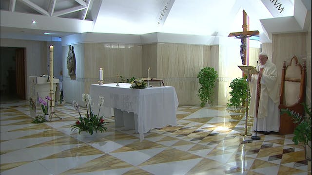 Pope prays for those who have lost th...