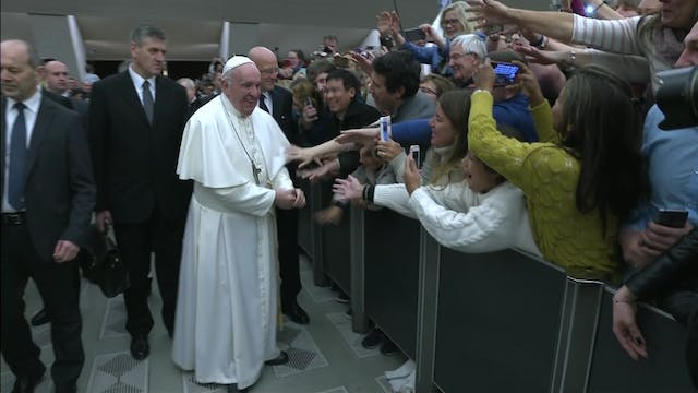Pope Francis: There is no covering up...