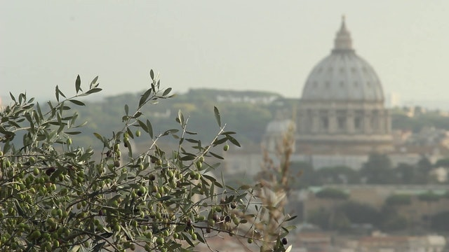 Vatican proposes helping tourist industry