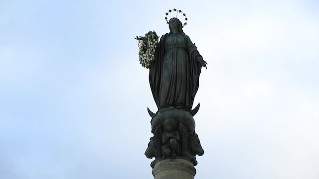 Italy to be dedicated to Immaculate h...
