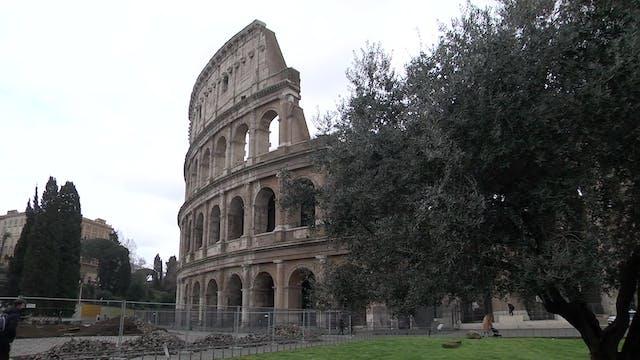 Coliseo expone dentro de sus muros la...