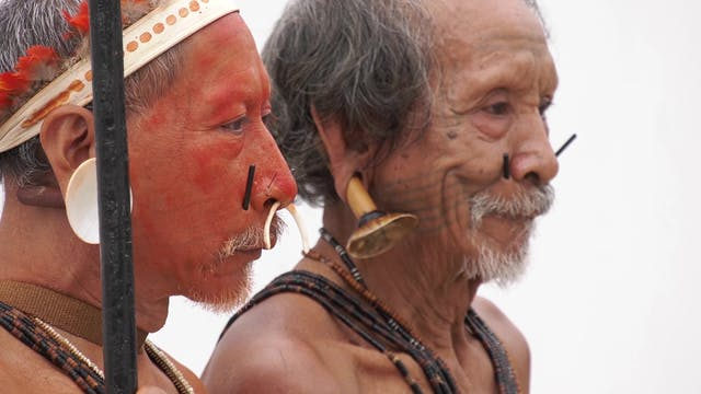 FAO alerta a gobiernos de Amazonia: L...