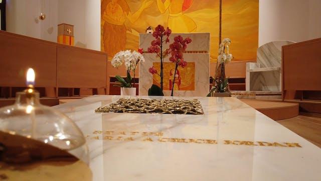 Salvatorians celebrate the beatificat...
