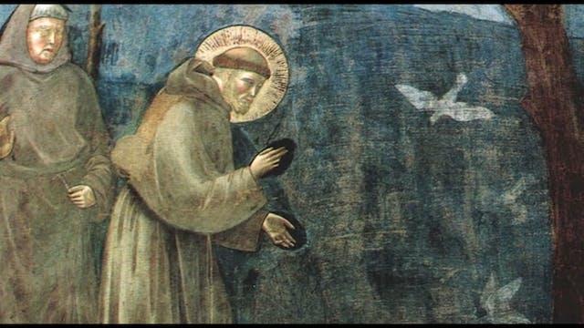Did St. Francis walk the Way of St. J...
