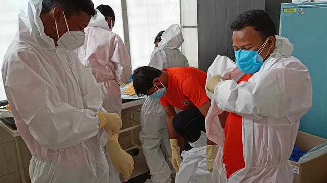 Voluntarios católicos van a hospitale...