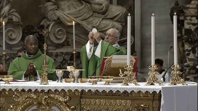 Papa volverá a celebrar Misa por migr...