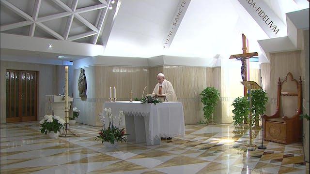 Papa pide proteger devoción mariana y...