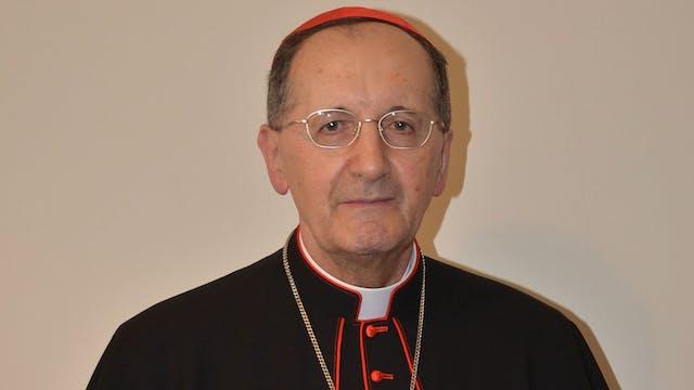 El cardenal Beniamino Stella cumple 8...