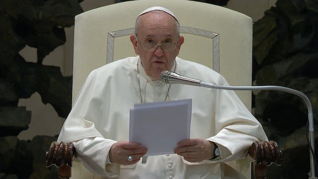 Pope Francis expresses shame for the ...