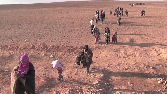 Papa llama a comunidad internacional a abordar crisis humanitaria en Irak