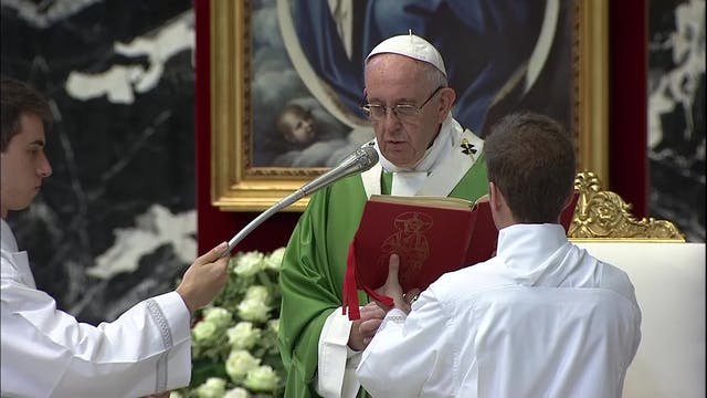 Francisco celebrará el lunes una misa...
