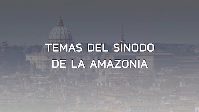 Claves del Sínodo del Amazonia