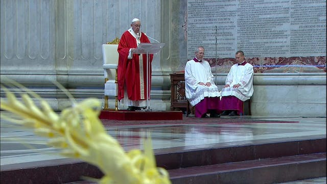 Pope on Palm Sunday: Don't think abou...