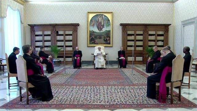 Pope at Audience on 50th celebration ...