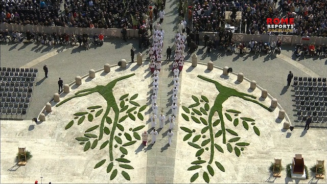 Pope celebrates first Holy Week liturgy tomorrow: alone and live streamed