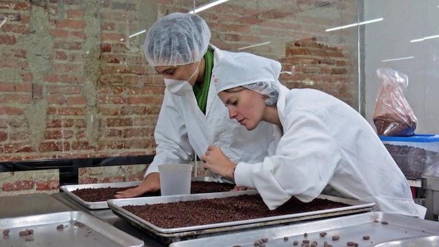Carpentry, mechanics, and chocolate help promote work culture in Venezuela