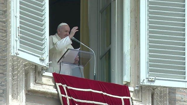 Papa en el Ángelus: La vida del crist...