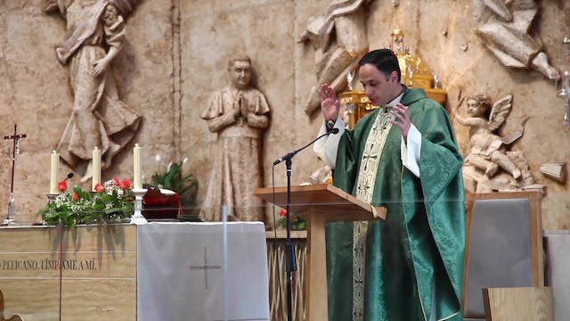 Campaign to prevent vocations from be...