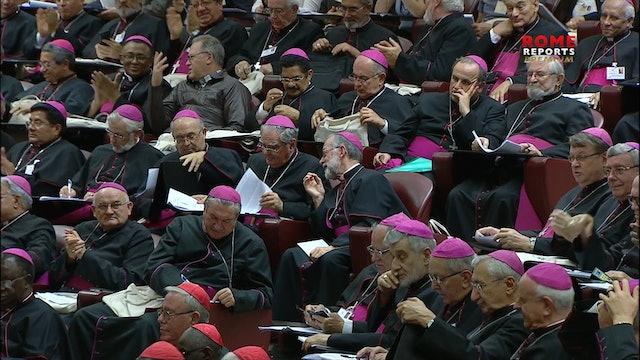 Nace la Conferencia Eclesial de Amazonía para materializar propuestas del sínodo