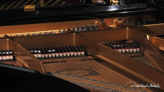Rondò 2021 - Recital: Maria Grazia Be...