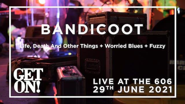 Bandicoot 2021-06-29