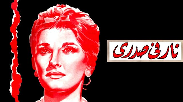 Nar Fe Sadry