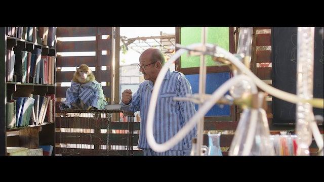 Alal Wadaak - Trailer