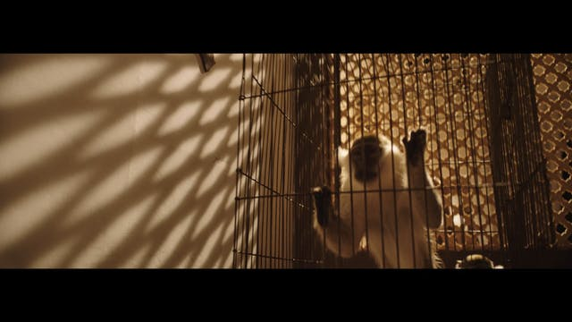 Al Kahf - Trailer