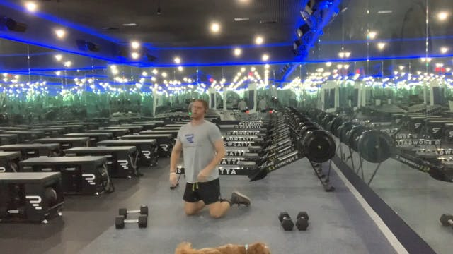 Rowing + Weights (dumbbells) | Full B...