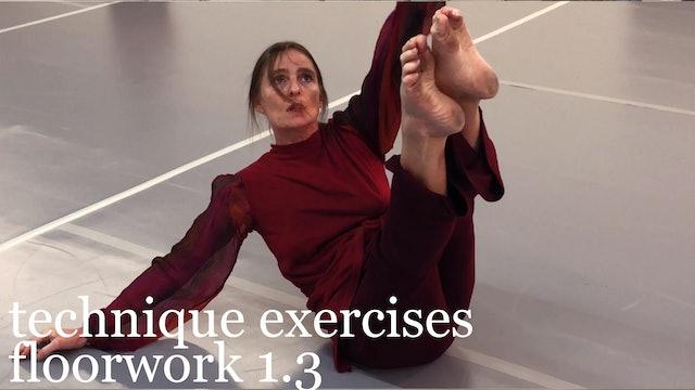 technique exercises: floorwork 1.3