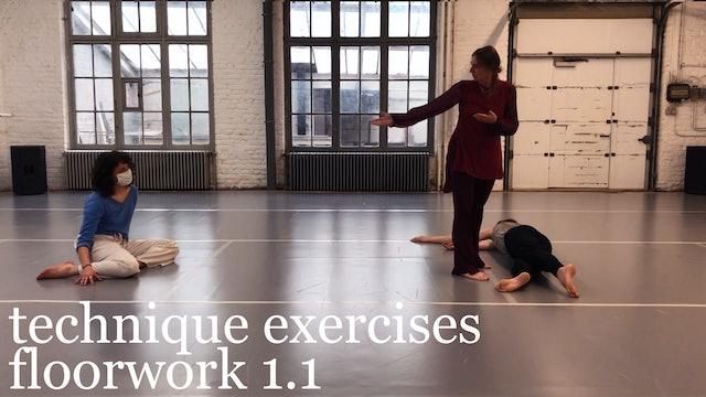 technique exercises: floorwork 1.1