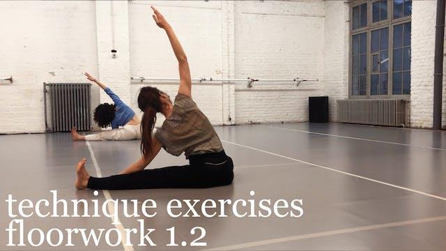 technique exercises: floorwork 1.2