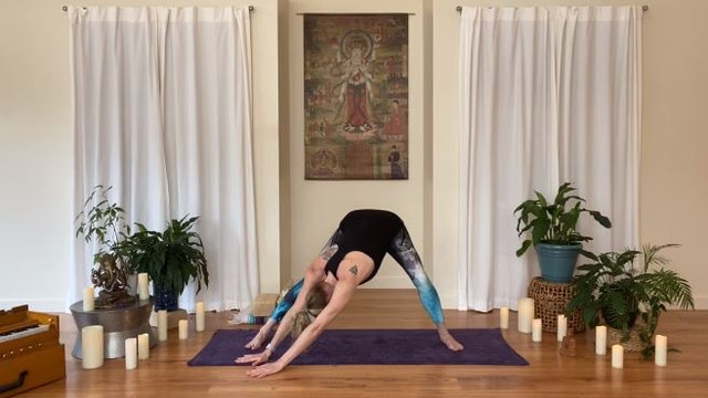 Gentle Yoga - Deep Stretch (Level 1)