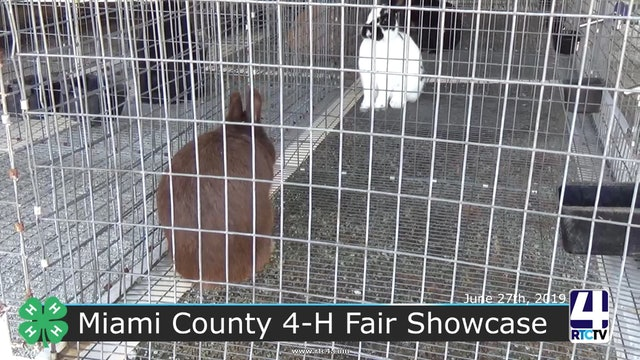 Miami County 2019 4H Fair Showcase