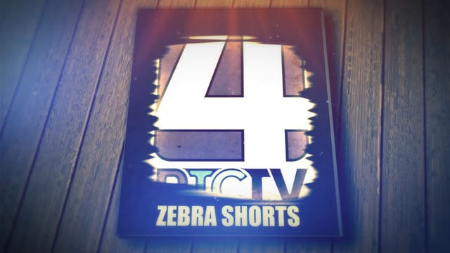 Zebra Shorts: Isaiah & BJ - Football ...