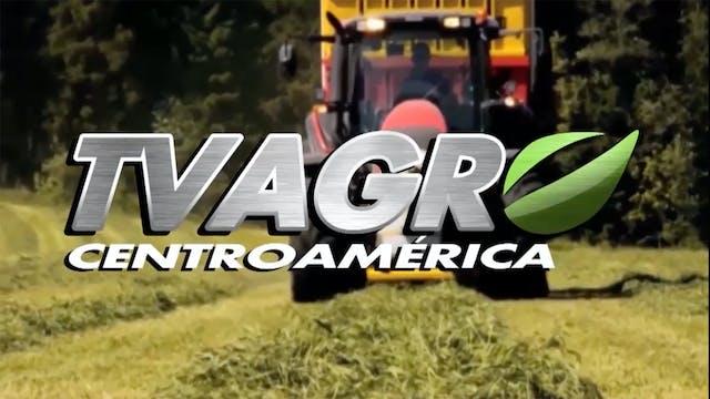 TV AGRO Centro América
