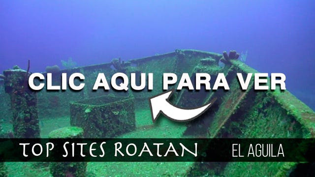 El Aguila Roatan Top Sites