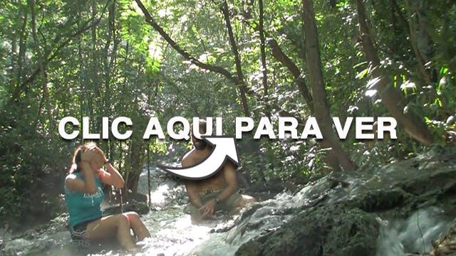 Finca el Paraiso Guatemala