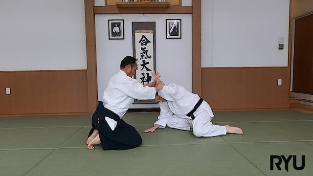 2021年度養神館審査科目昇級規定技 2021-2022 Yoshinkan Test Syllabus Set Techniques 1-3rd Kyu