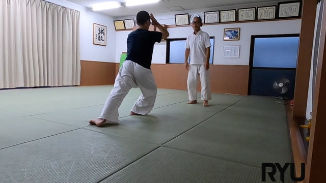 2021/8/28 龍オンラインfor all: 安藤師範 Ryu ZOOM Aikido: Ando Sensei