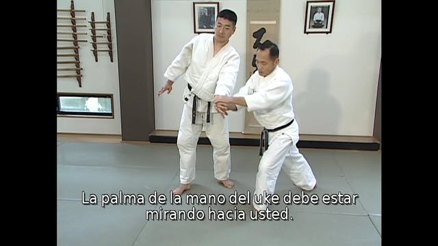 Shokyu Test Syllabus (Spanish) Progra...