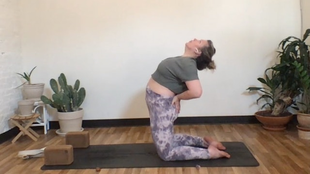 Sun Salutation with Annelise (Livestream 2.28) 45 Minutes