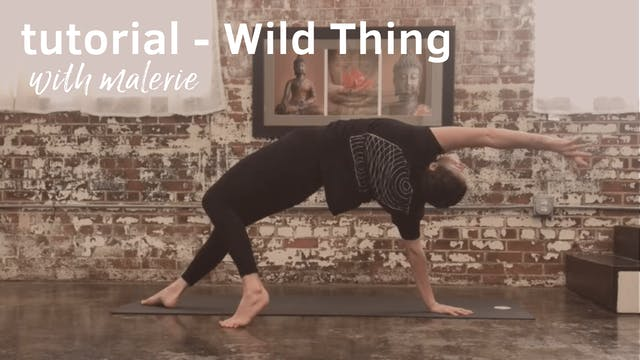 Tutorial on Wild Thing