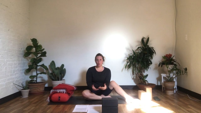 Restore + Nidra with Annelise (All Levels + Prenatal Appropriate)