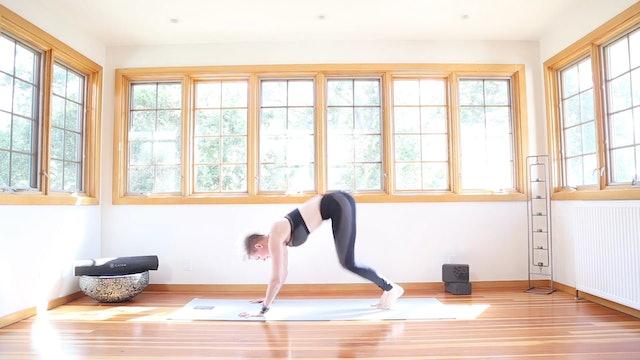 Yoga Shred®: Shakti Kicks & Tabletop Pushups