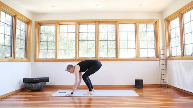Yoga Shred®: Yoga Burpees