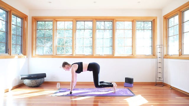 TBT30 Yoga Shred™ Weight Loss Accelerator Practice