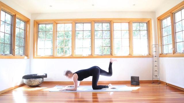 Yoga Shred®: Down Dog Kicks Of Fire
